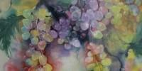 Fruit of the Vine -001